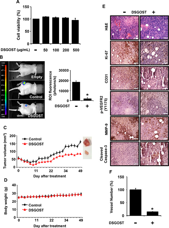 Inhibitory effect of DSGOST on tumor growth and angiogenesis in vivo.