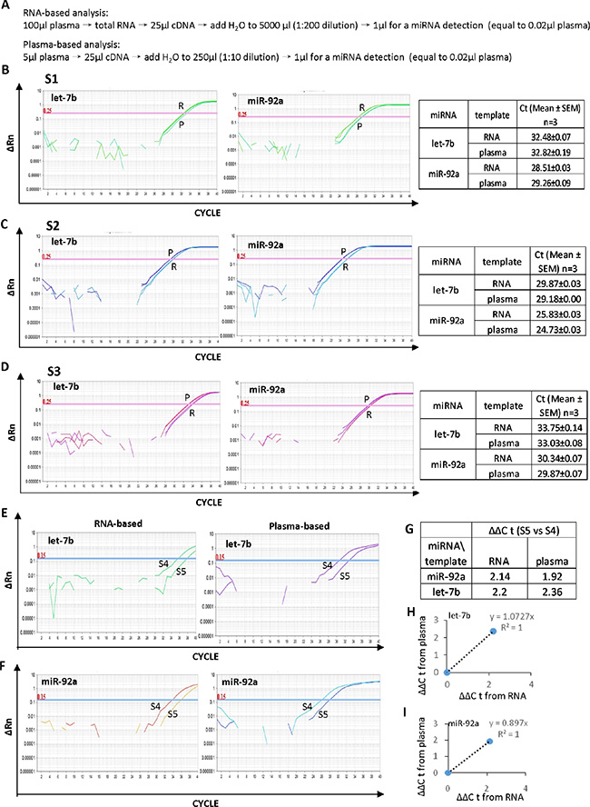 High efficiency of the plasma-based direct quantification of circulating miRNAs.