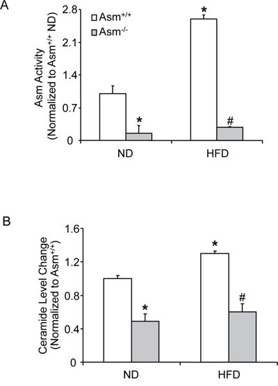 Effects of the normal diet and high fat diet on renal tissue Asm activity and total ceramide production in Asm+/+ and Asm-/- mice.