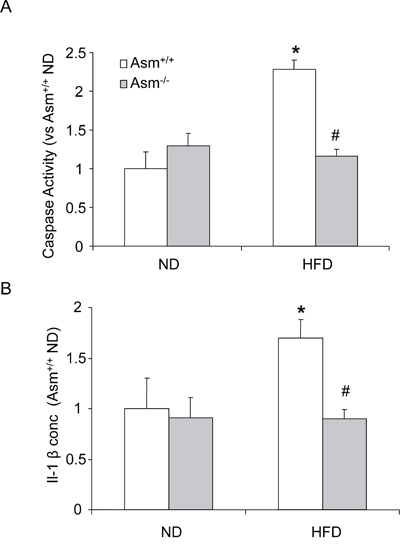 Effects of the normal diet and high fat diet on caspase-1 activity and IL-1β production in Asm+/+ and Asm-/- mice.