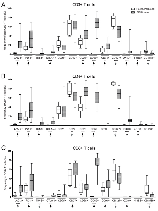 Comparison of T cell subset frequencies in peripheral blood (PB) (n = 10) and benign prostatic hyperplasia (BPH) tissue (n = 31) obtained from BPH patients.