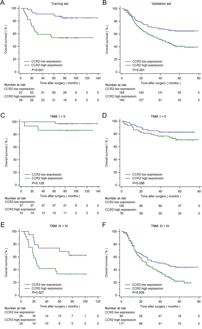 Kaplan–Meier analysis for OS of patients with gastric cancer according to CCR2 expression.
