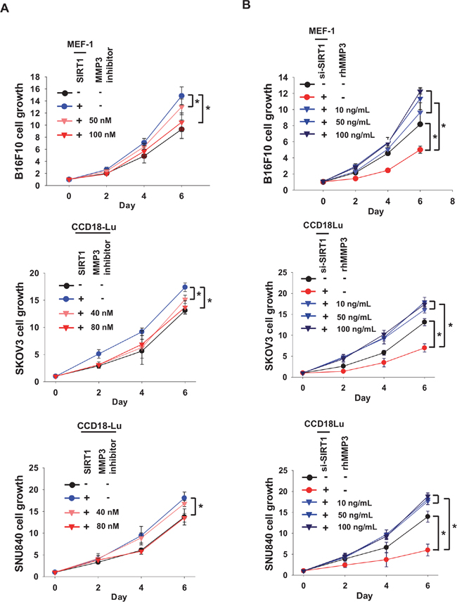MMP3 acts as a growth factor for cancer cells.