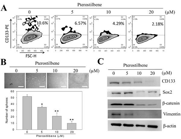 Treatment of pterostilbene decreased the percentage of CD133