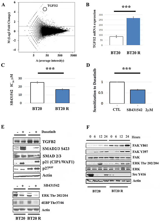 signaling contributes to acquired resistance to dasatinib.