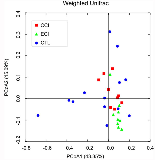 Weighted Unifrac PCoA analysis of gut microbiota based on the OTU data from pyrosequencing run.