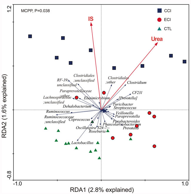 Biplot of redundancy analysis (RDA) of the gut microbiota compositions after ECI treatments in CKD rats.