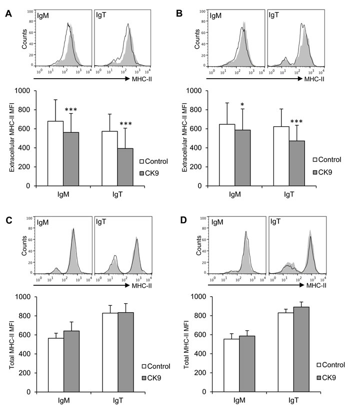 Effect of CK9 on the expression of MHC II on trout B lymphocytes.