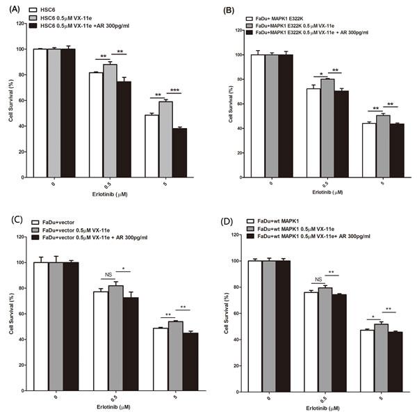MAPK1 inhibition decreased sensitivity to erlotinib in