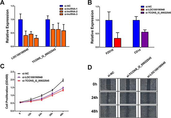 Functional analysis of candidate dysregulated lncRNAs.