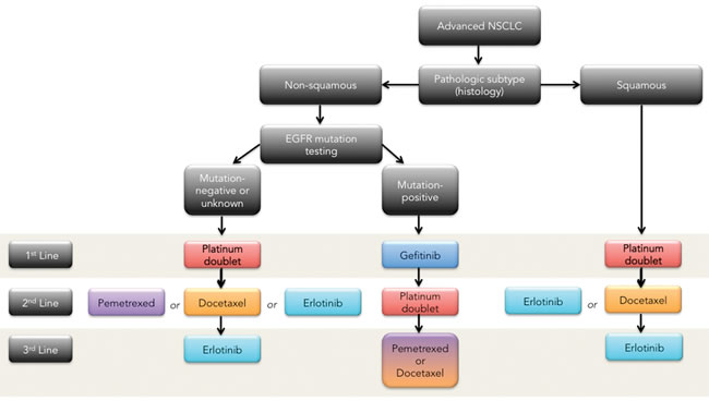 NSCLC therapeutic management algorithm (maintenance therapy not included)