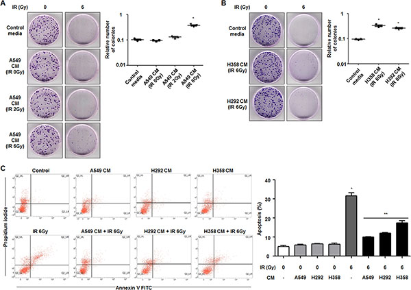 Secretome from radioresistant cells promotes survival of radiosensitive cells in NSCLC.