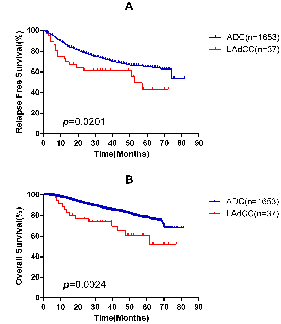 Kaplan-Meier survival curves for relapse-free survival A. and overall survival B. according to lung adenocarcinoma with clear cell component (LAdCC) and lung adenocarcinoma (ADC).