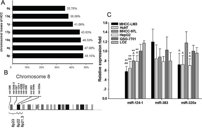 Aberrant microRNA expression in hepatocellular carcinoma.