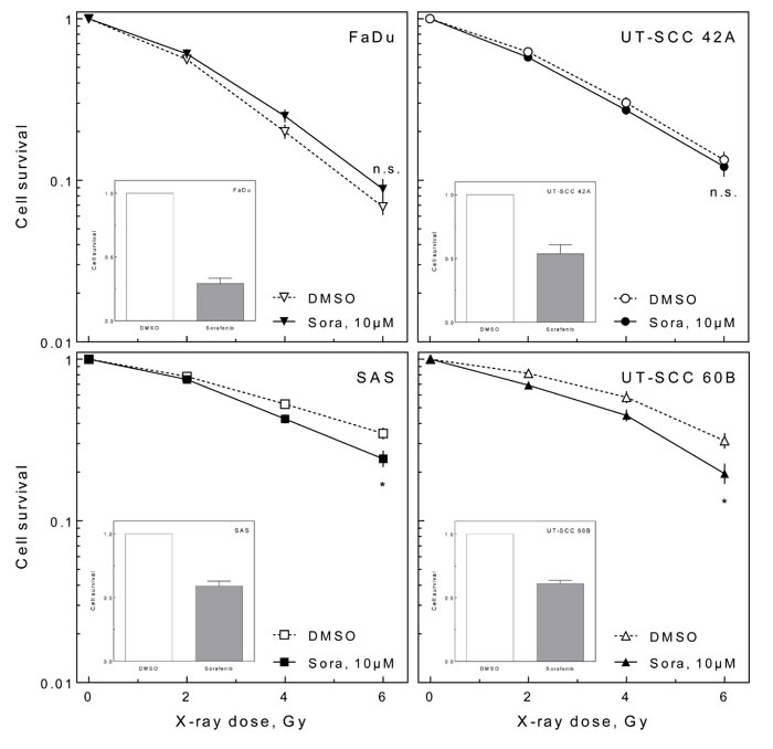 Effect of sorafenib on cellular radiosensitivity.