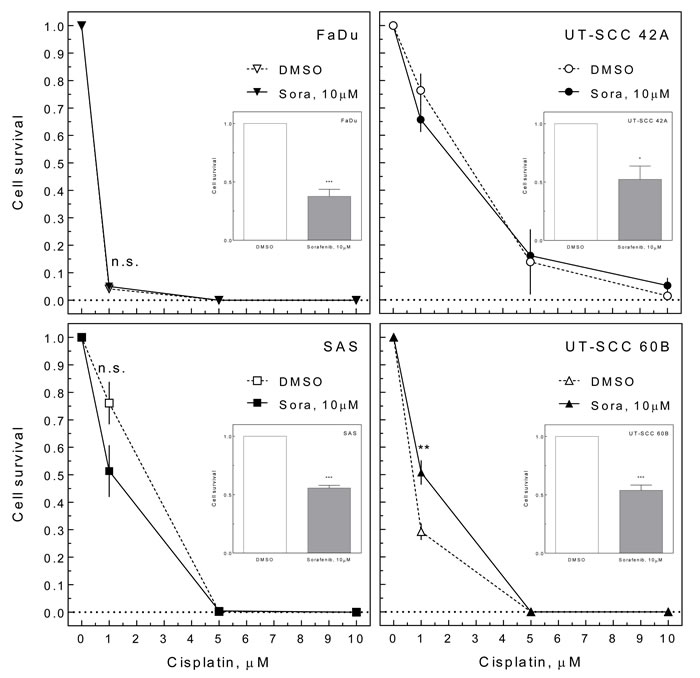 Effect of sorafenib on cisplatin-induced cell inactivation.