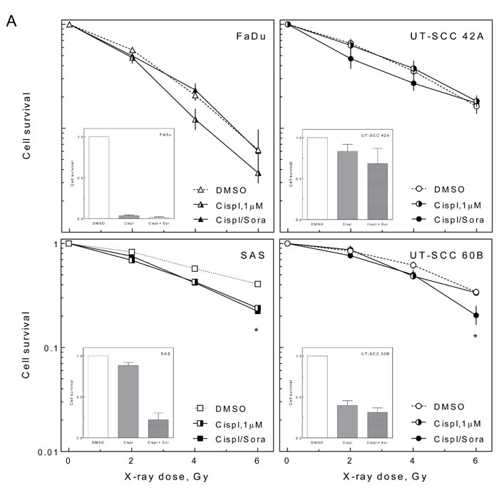 Effect of sorafenib on cell inactivation after combined treatment.
