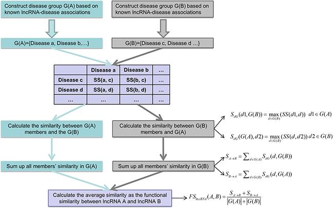 Flowchart of lncRNA functional similarity calculation model based on disease semantic similarity.