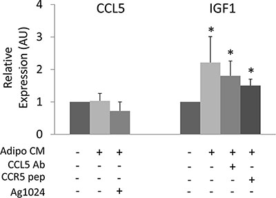 Cross-regulation of CCL5 and IGF-1 in cancer cells.