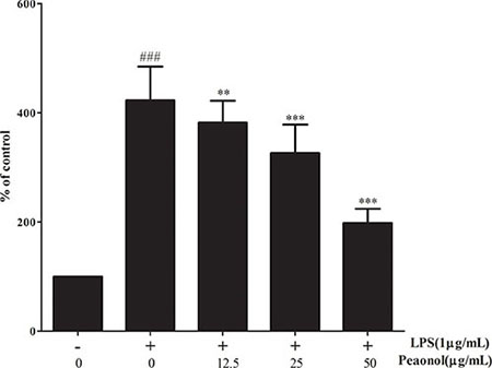 The effect of paeonol on the DNA-binding activity of NF-κB in DCs.