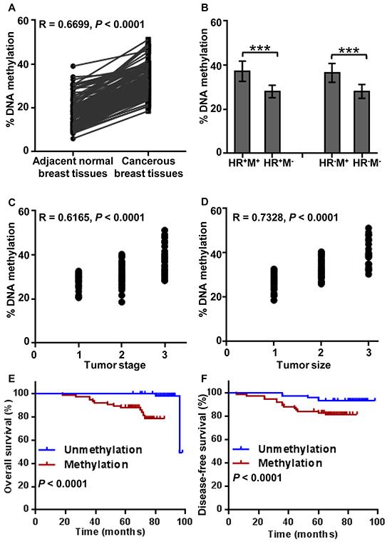Analysis of BRCA1 promoter methylation levels' correlations.