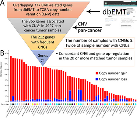 Collection of 71 EMT-implicated genes with increased gene expression induced by CNGs.