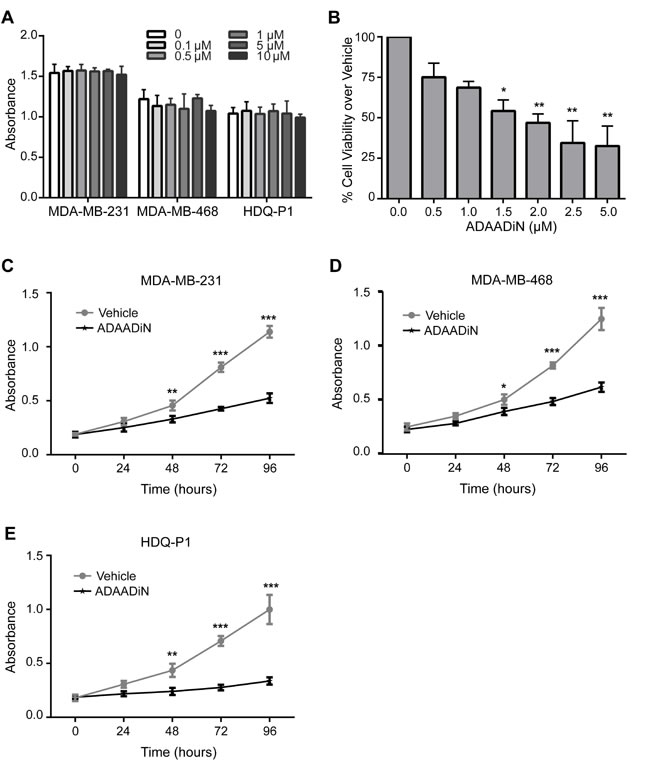 Effects of BRG1 inhibitors on breast cancer cell proliferation and viability.