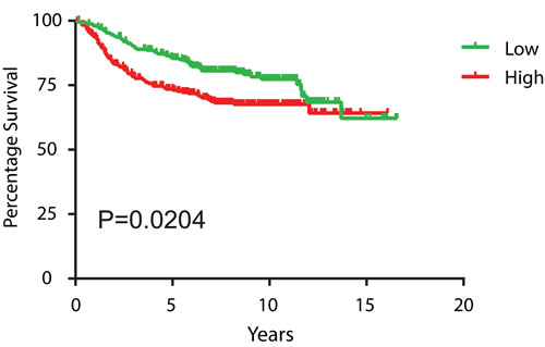 High BRG1 expression levels in breast tumors predicts poor patient prognosis.