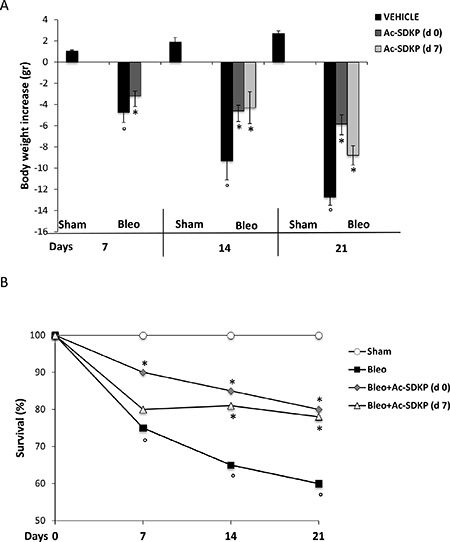 Protective effects of Ac-SDKP treatment on BLEO-induced mortality and weight loss.