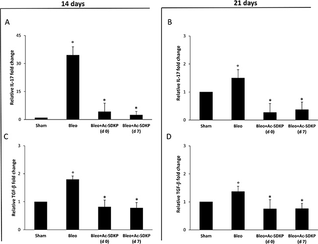 Ac-SDKP treatment suppressed BLEO-induced over-expression of IL-17 and TGF-β mRNA in mouse lung tissue.