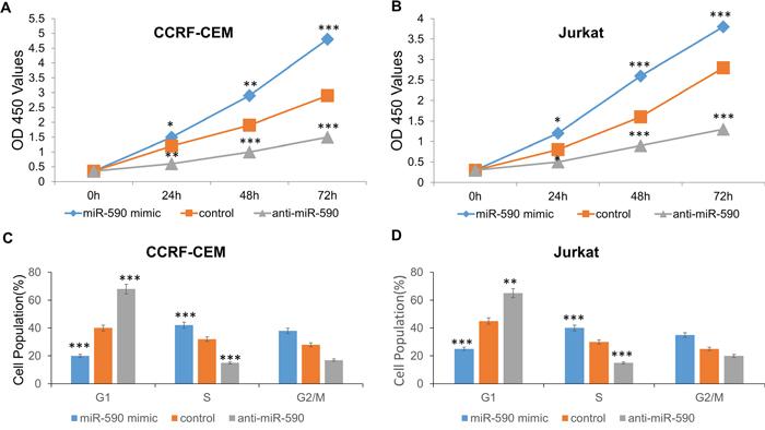 miR-590 regulates T-ALL cell proliferation.