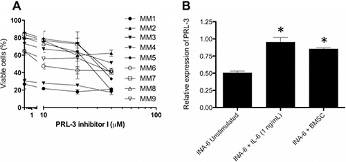 PRL-3 inhibition reduces survival in patient samples, and BMSC from myeloma patients induces PRL-3 expression.
