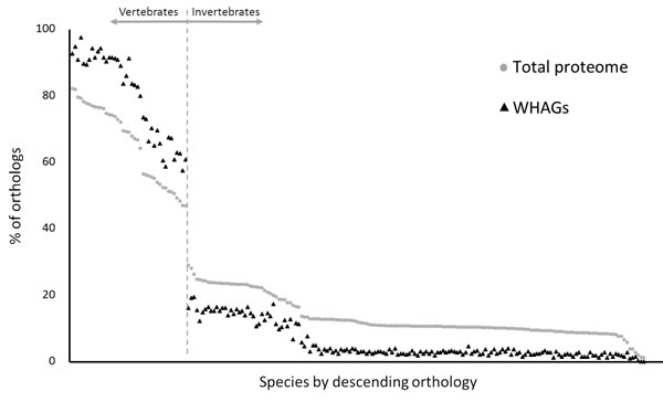 Evolutionary conservation of skin wound healing-associated genes.