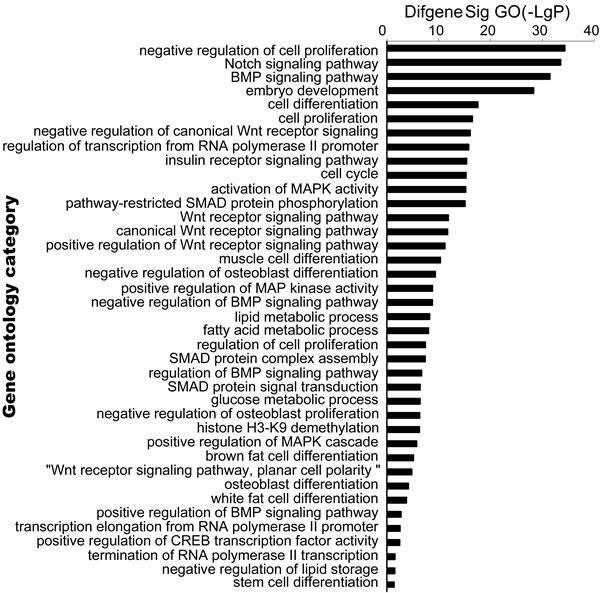 Bioinformatic analysis target genes of meta-signature miRNAs.