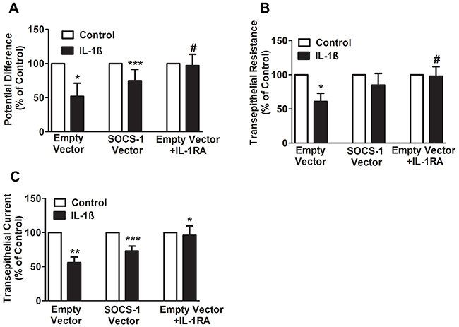 SOCS-1 rescues the IL-1β mediated decrease in PD, TER, and TEC.