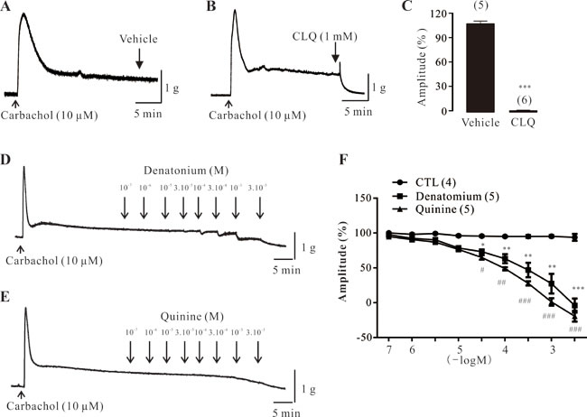 Effect of bitter tastants on carbachol-induced contractions of mouse DSM strips.