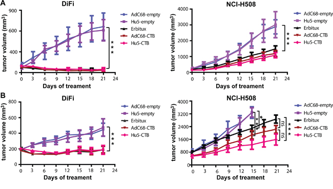 Intramuscular injection of AdC68-CTB or Hu5-CTB suppressed the growth of DiFi and NCI-H508 cells in nude mice.