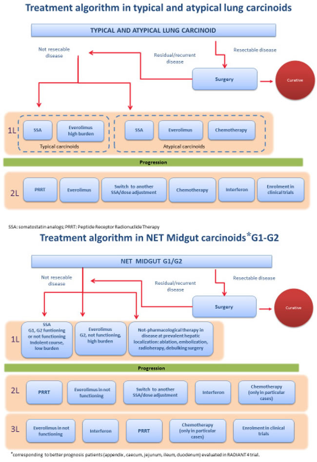 Treatment algorithm – proposed by the authors – for the treatment of lung carcinoids (Panel A) and of midgut G1-2 carcinoids (Panel B) after the publication of the RADIANT-4 trial.