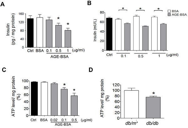 Effects of AGEs on insulin content and ATP production in β-cells.