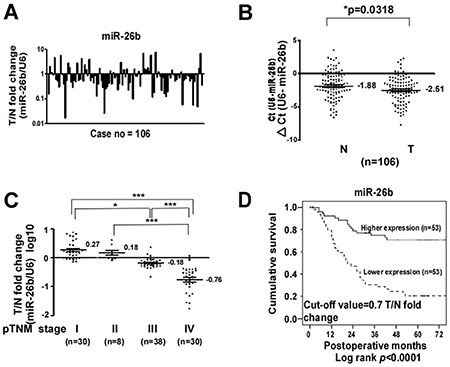 Downregulation of miR-26b in clinical GC tissues is correlated with advanced clinical stage and poor prognosis.