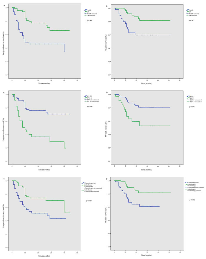 Subgroup analysis of survival among ENKTL patients treated using the P-gemox regimen.