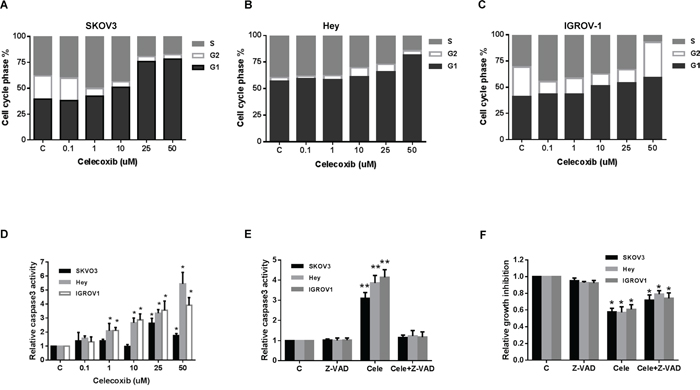 Celecoxib induced cell cycle G1 arrest and apoptosis in ovarian cancer cells lines.