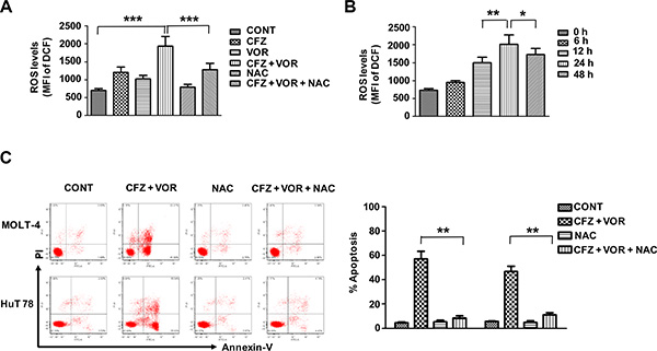 Combination treatment of carfilzomib and vorinostat induced ROS generation and induced apoptosis by the combination treatment is blocked by the ROS inhibitor.