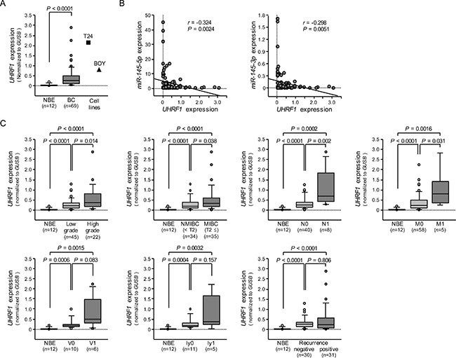 The expression level of UHRF1 mRNA in BC clinical specimens and cell lines, and association of UHRF1 expression with clinicopathological parameters.