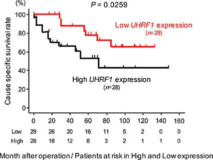 The association between the expression level of UHRF1 and cause specific survival rate.