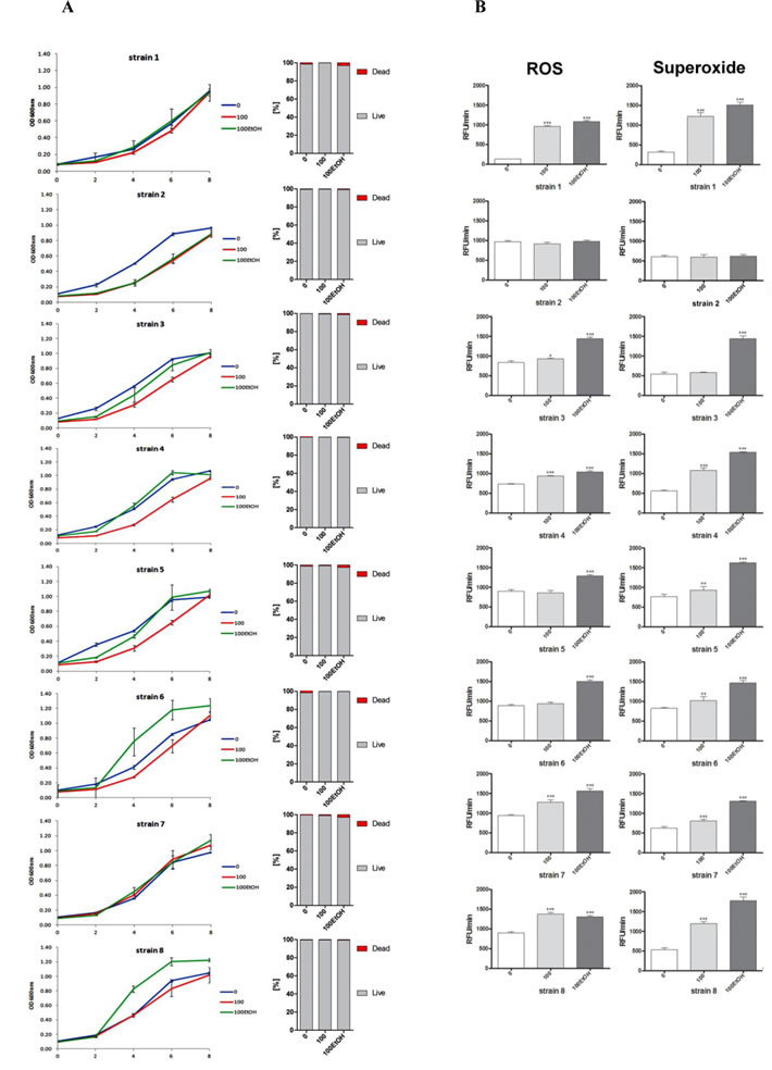 Generation- and ethanol-mediated changes in the growth rate and viability (A), and the production of total reactive oxygen species (ROS) and superoxide (B).