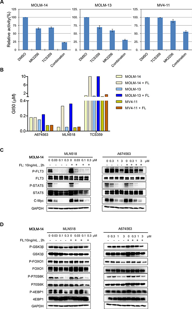 Effect of A674563 on FLT3- and AKT-mediated signaling and overriding of FLT3 ligand-induced drug resistance.