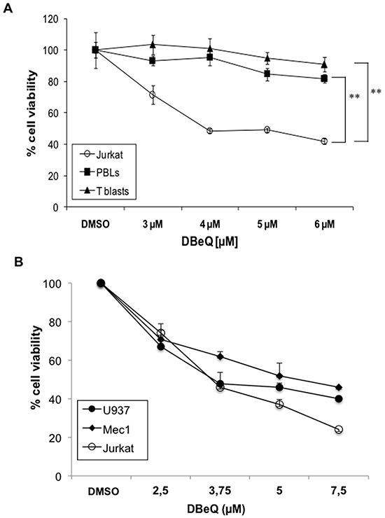 Effect of the VCP inhibitor DBeQ on leukemic and normal lymphocytes.
