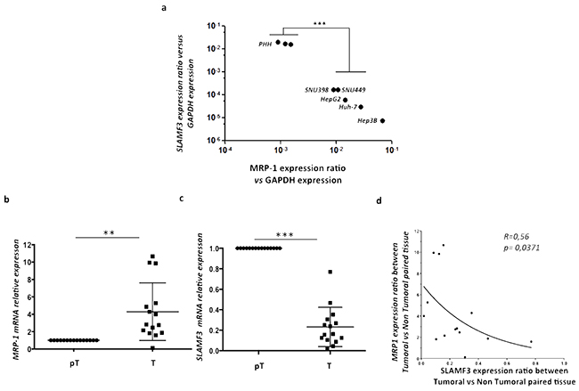 Inverse correlation between SLAMF3 and MRP-1 expression in HCC cell lines and primary hepatocytes.