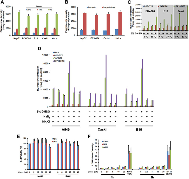 Effects of serum, heparin and temperature on uptake of hPP10 and its safety evaluation.
